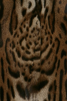 Lot 23-An ocelot fur coat, early 1970s